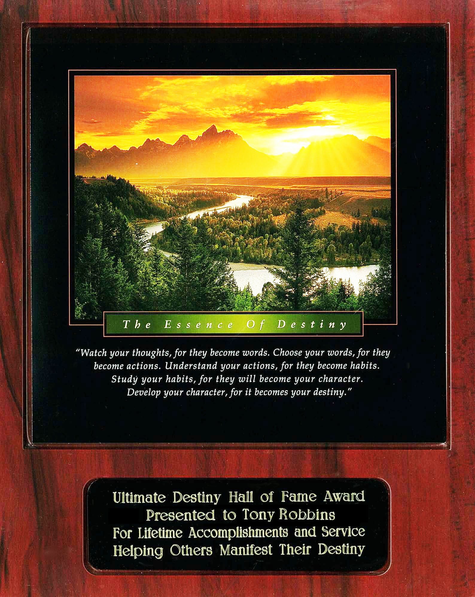 Tony Robbins Ultimate Destiny Hall of Fame Award Recipient Plaque